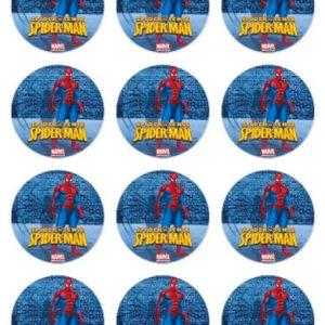 photo pour gâteau mini disques 6 cm Spiderman